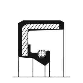 rotary shaft seal ap